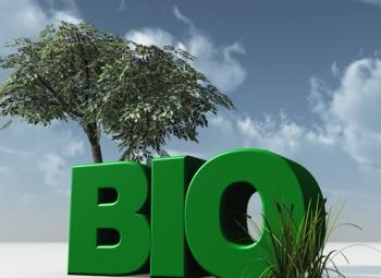 Iisalmen kaukolämmityksessä siirrytään bioöljyyn