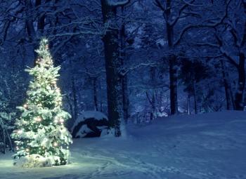 Olipa kerran joulun alla