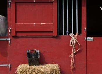Hevosenlannasta energiaa