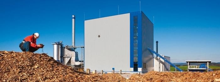 Saksassa biomassan tuki loppumassa