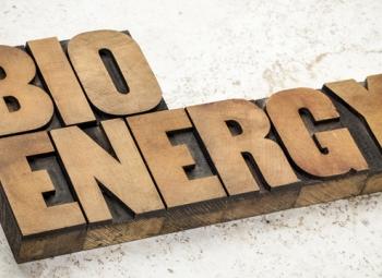 Biomassalle pelisäännöt?
