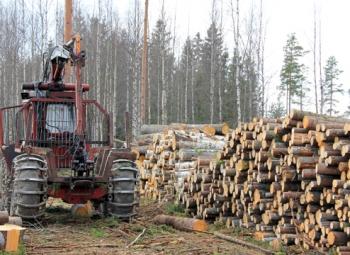 Metsien käyttöä voidaan lisätä